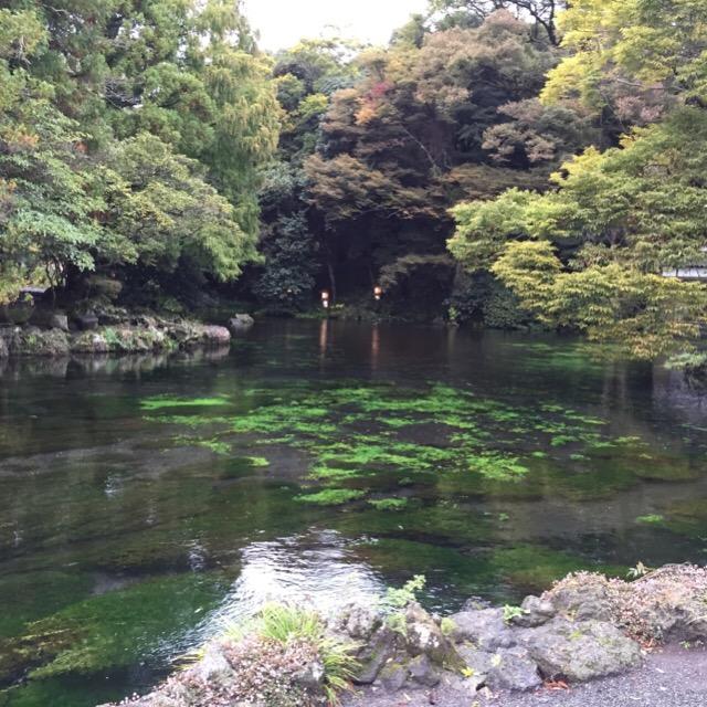 【富士山本宮浅間大社】  浅間神社の総本宮。湧玉池が奇麗! ご神体は富士山です