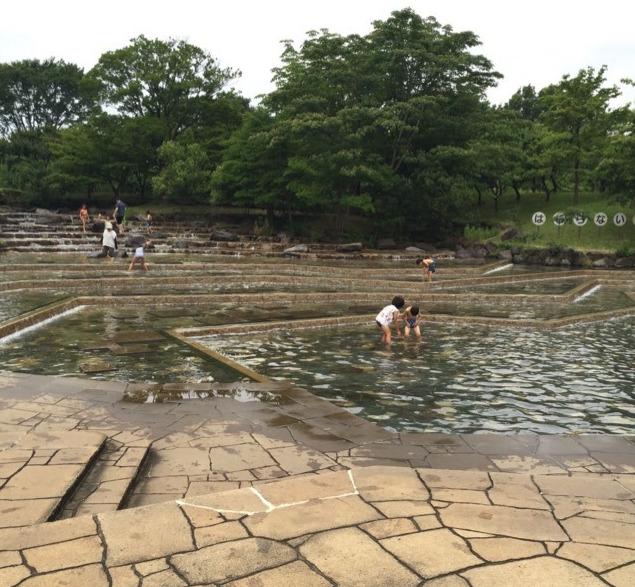 【府中市郷土の森 アジサイ祭り】 旧府中尋常高等小学校を見て水遊びを楽しむ