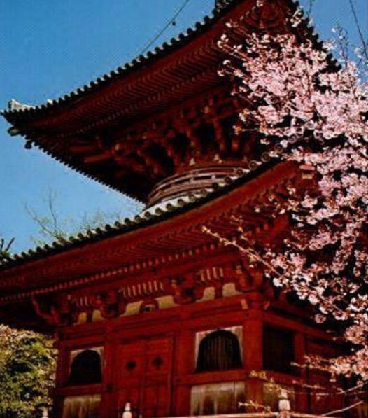 【紀三井寺】 関西一の早咲き桜で有名。西国三十三ヵ所巡りの第二番札所