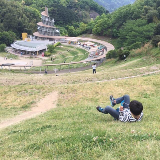 【海南市わんぱく公園】 入場無料。芝そりには、ダンボールを使いましょう