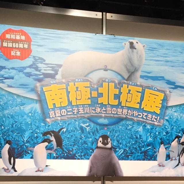 玉川高島屋S-Cで開催中の「南極・北極展」