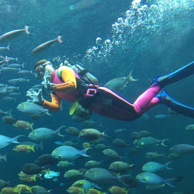 【箱根園水族館】 バイカルアザラシがオススメ! 海水水槽は、標高日本一!