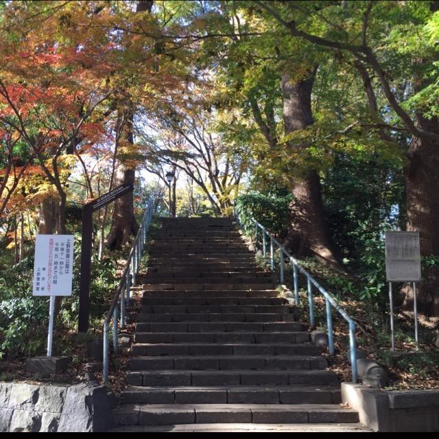 【摺鉢山(すりばちやま)古墳】 1500年前の前方後円墳が上野にある