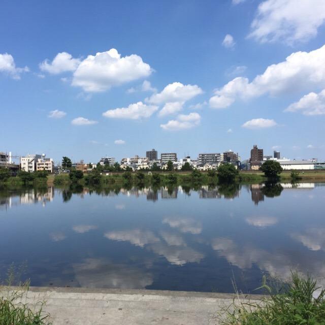 【天気の良い日は、河川敷を家族でサイクリング】 多摩川サイクリングロードが気持ち良い!