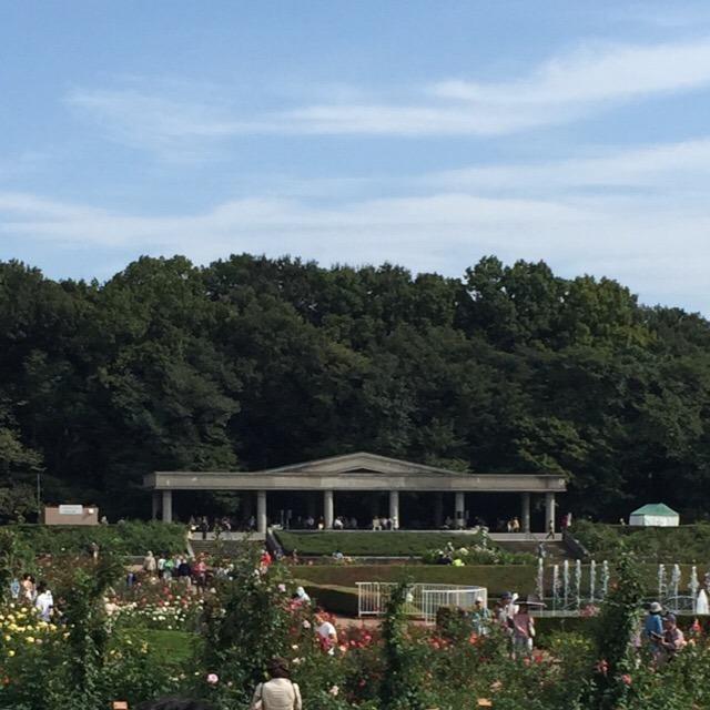 【神代(じんだい)植物公園 バラ園】 関東有数のバラ園です