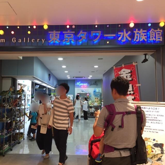 【東京タワーの水族館が、今月末で営業終了】 閉館理由は?