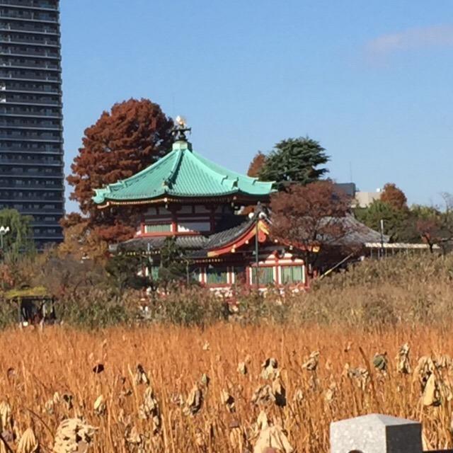 【不忍池辯天堂(不忍池の弁天堂)】 天海が琵琶湖の竹生島と宝厳寺になぞらえて建てた