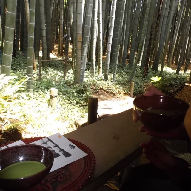 【報国寺(竹寺)】 ミシュラン3つ星の竹寺で抹茶をいただく。三浦半島2デイきっぷ②