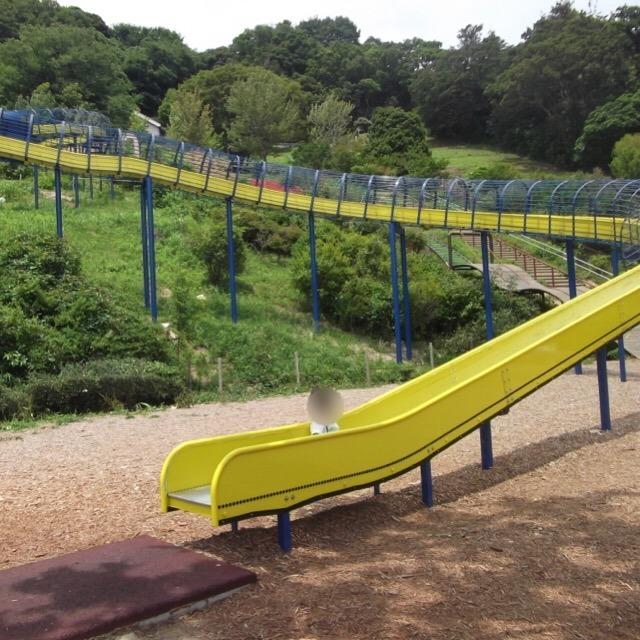 【金沢動物園】 100mのローラー滑り台と、オカピがオススメ