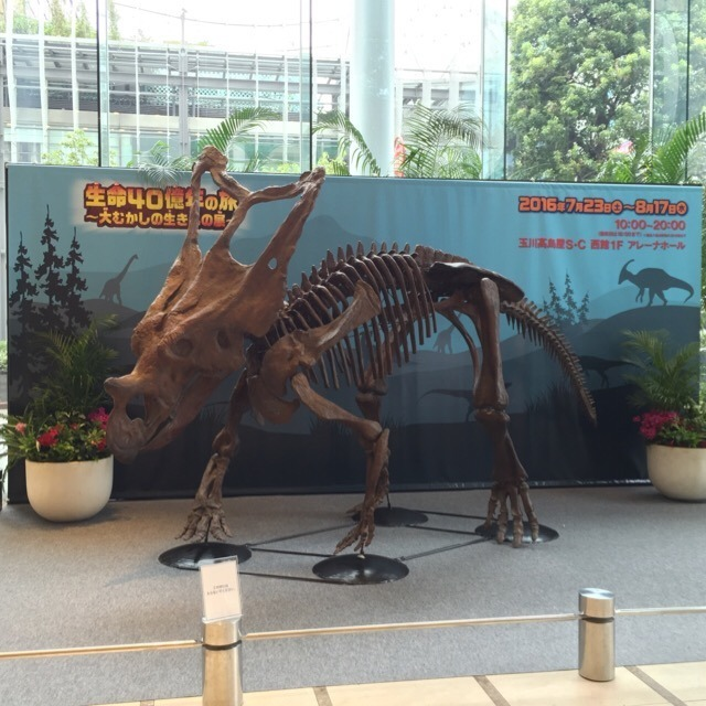 玉川高島屋S・C「生命40億年の旅 ・大むかしの生きもの展 」