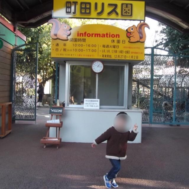 【町田リス園】 リスに触れる!囲まれる! リス好きのためのパラダイス