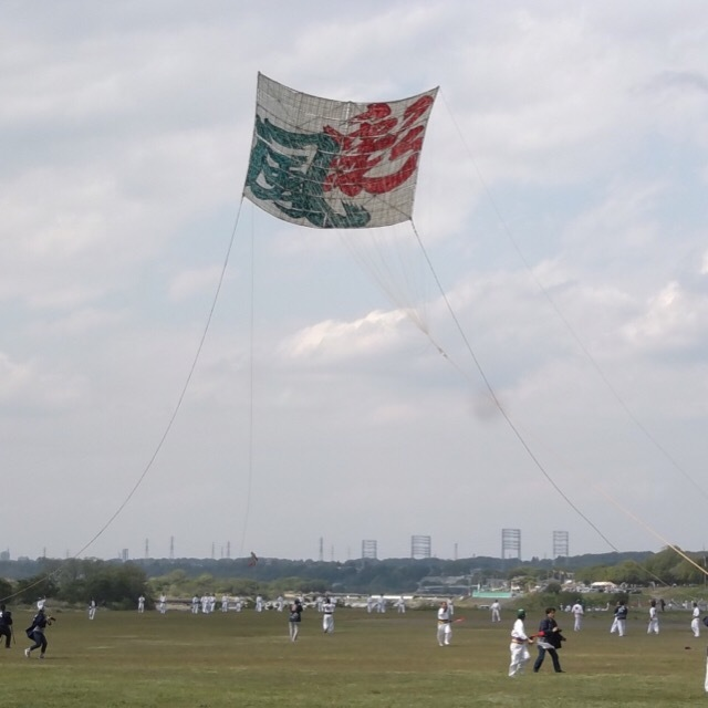 【相模の大凧まつり】 日本一の大凧あげが見れる。  毎年5月4日から二日間開催