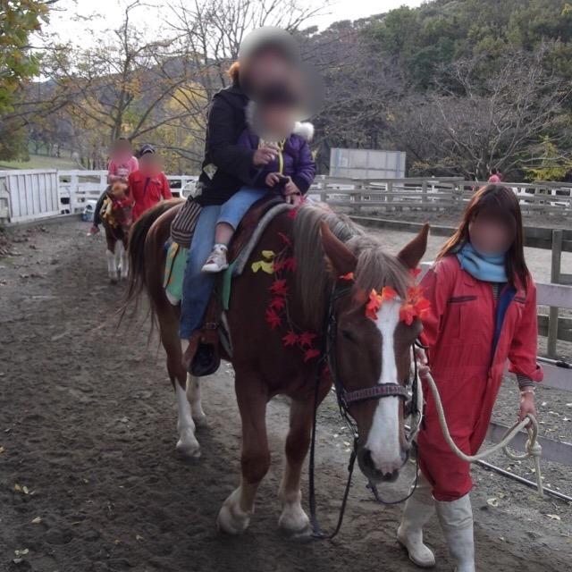【こどもの国(横浜)】 雪印牧場がオススメ。旧・田奈弾薬庫だったところで、遺構がいくつかある