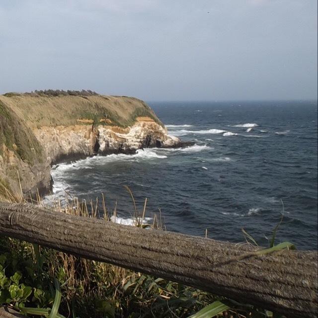 【城ヶ島を散歩】 うらりと三崎港でまぐろを楽しむ。三浦半島2デイきっぷ③