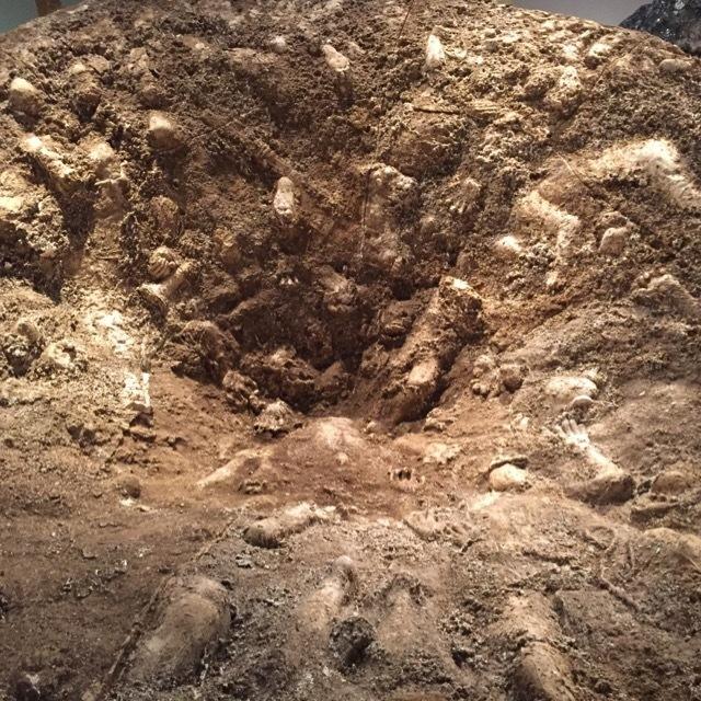 川崎ローム斜面崩壊実験事故