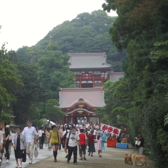 【鶴岡八幡宮例大祭と、鎌倉駅周辺観光】 毎年、9月14日から16日に開催