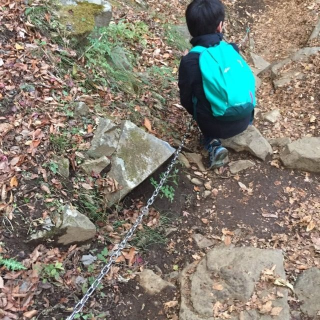 【大山下山】 山頂から見晴らし台を経由して阿夫利神社下社へ。