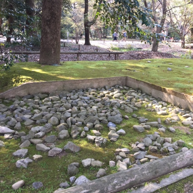 【糺の森(ただすのもり)】 下鴨神社の原生林。古代遺跡のある森で、葵祭の名物「申餅」を食べる