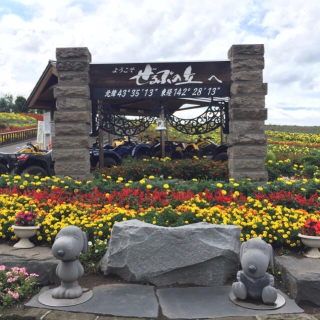 【ぜるぶの丘・亜斗夢の丘】 入園無料・駐車場無料のお花畑で、バギーやカートも楽しめます。ケンとメリーの木の近く