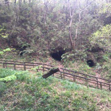 【生田長者穴横穴墳群(いくたちょうじゃあなよこあなぼぐん)】 生田緑地に、およそ1400年前に造られた横穴墓群があった