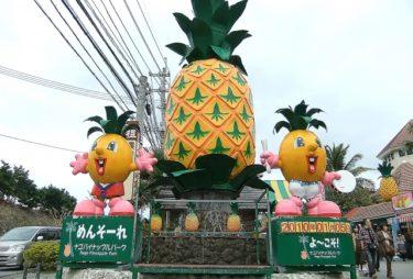 【ナゴパイナップルパーク】 パイナップル号に乗って園内を見学。いろんなパイナップル製品を楽しめます
