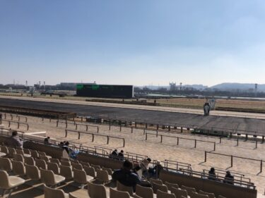 【JRA 東京競馬場(府中市)】 競馬をしなくても楽しめる! 無料乗馬体験とJRA競馬博物館が楽しい!