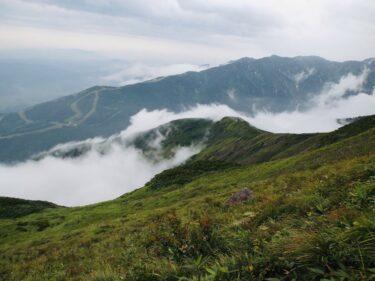 【白馬八方尾根(はくばはっぽうおね)ハイキング】 八方アルペンラインで標高1830mへ。美しい八方池、北アルプス山脈、高山植物!